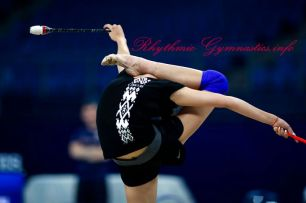 ALINA HARNASKO