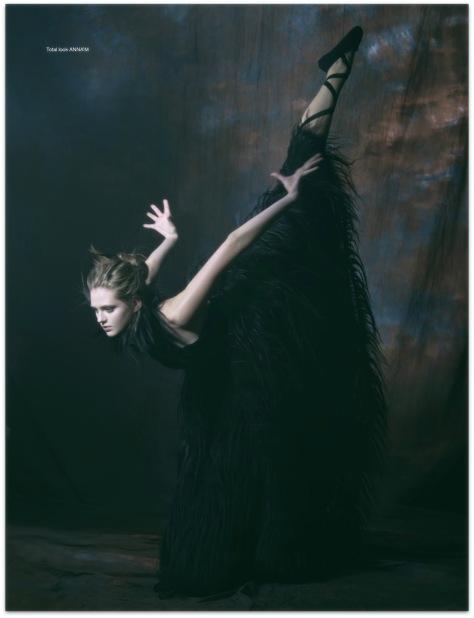 black_swan_10.jpg